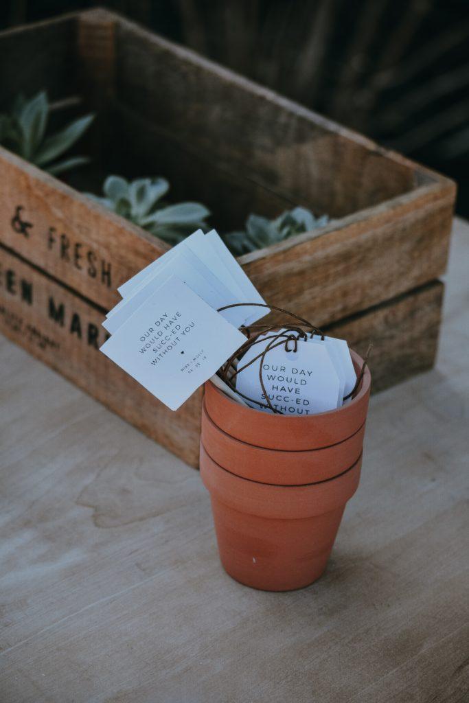 Gastgeschenk Pflanze Sukkulent Hochzeit Hochzeitsplaner
